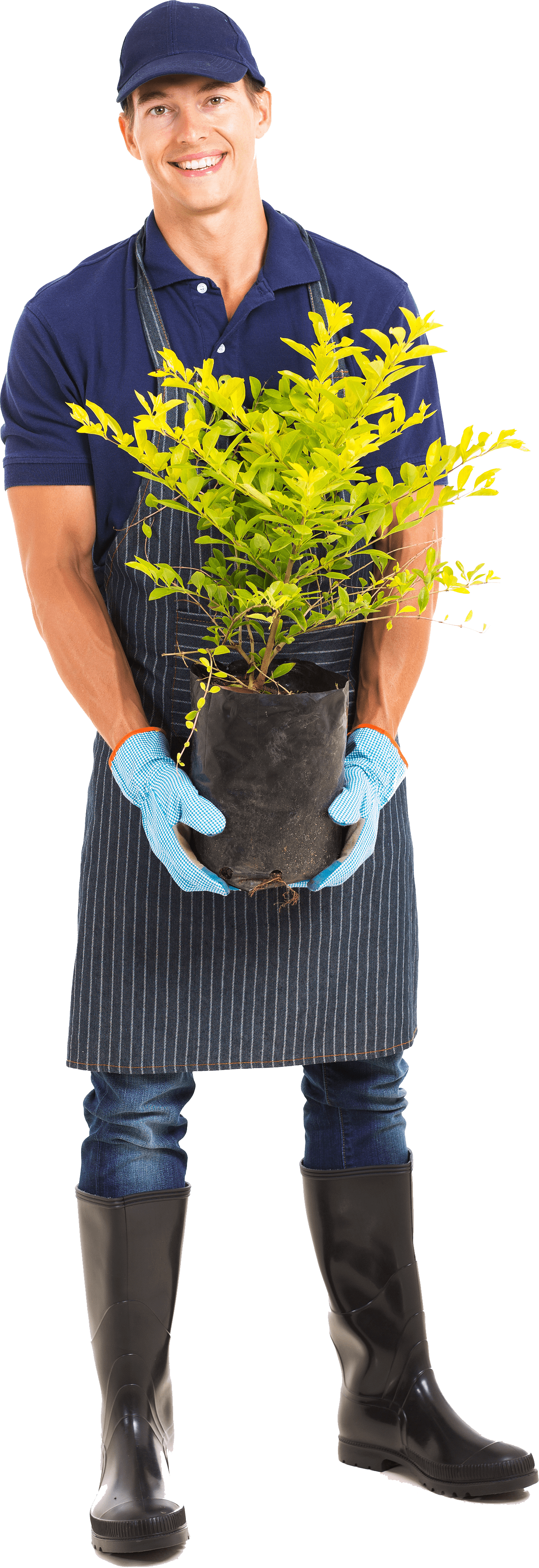 Residential and commercial gardening services affordable for Gardening tools dublin